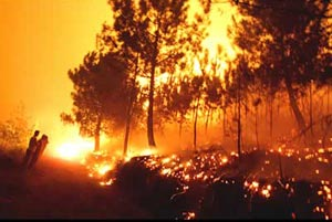 20100531112043-20070524134632-incendio.jpg